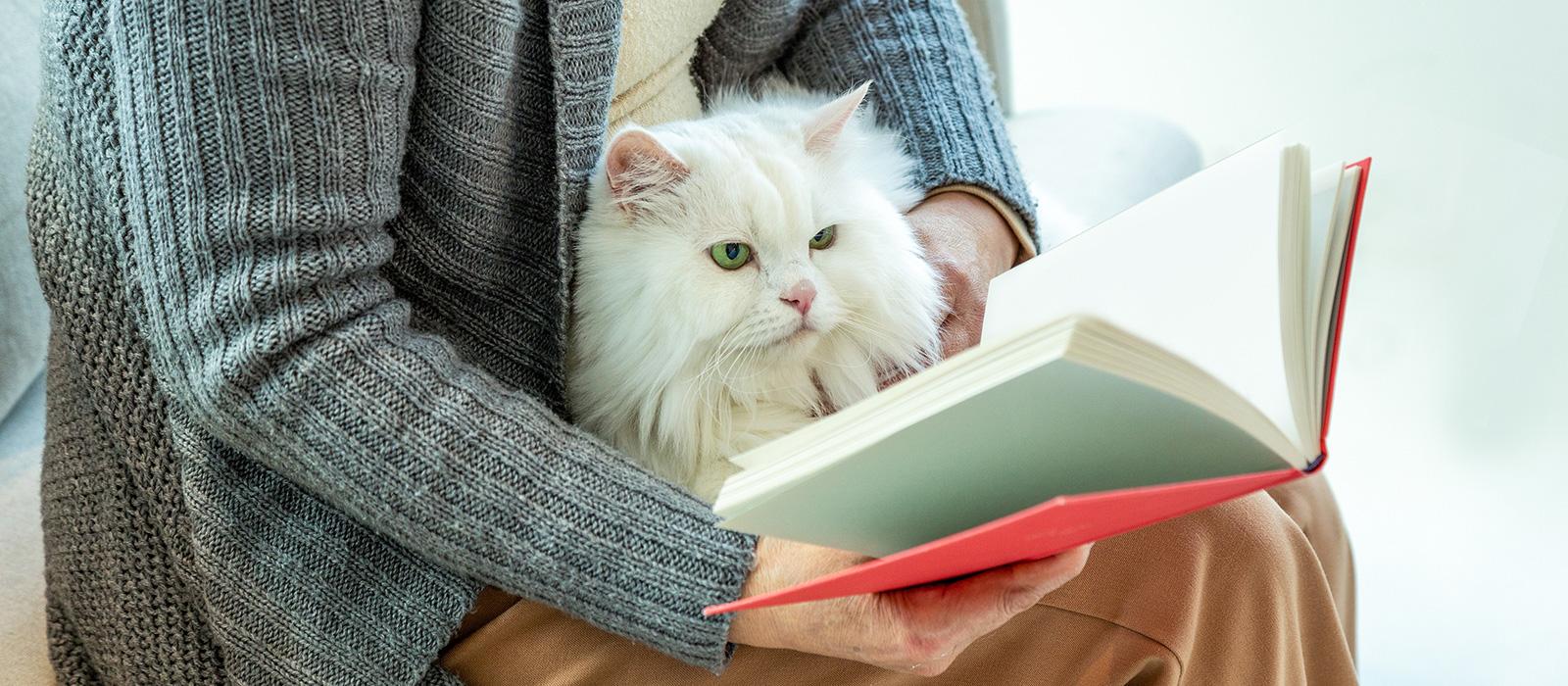 ペットの将来を考えた預金の方法について