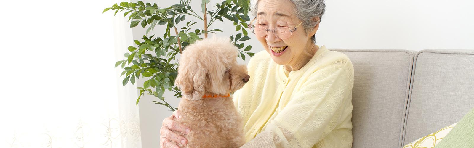 ペットのための信託について